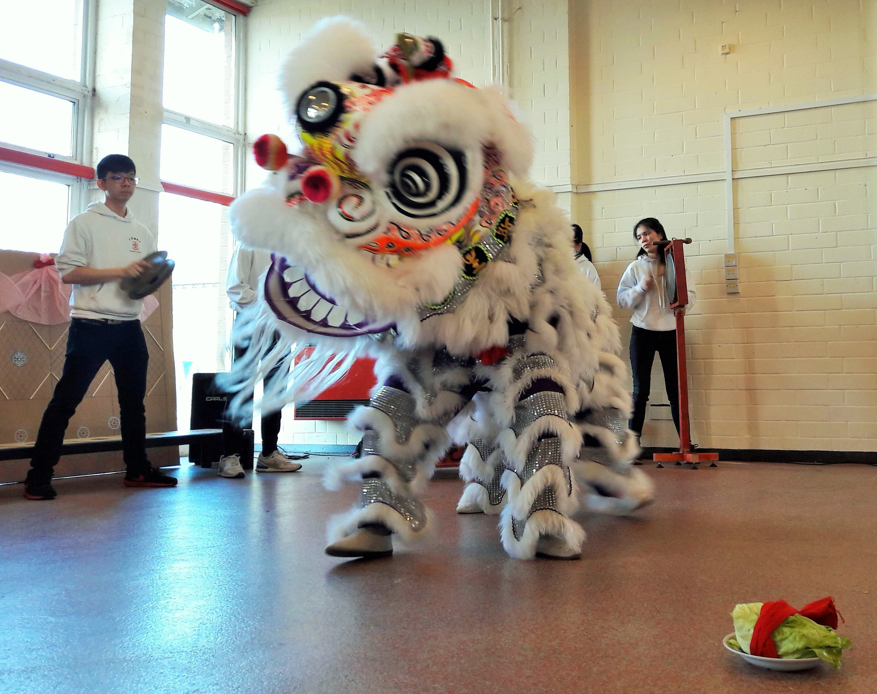 Chinese Lion Dance Team